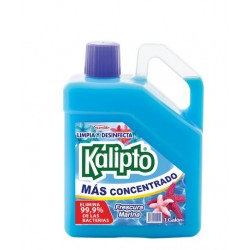 DESINFECTANTE KALIPTO GALÓN